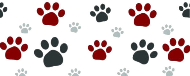 Paw print clipart jpeg clip black and white library cropped-paw-print-clip-art-color10-large2.jpg - Skylar's Haven clip black and white library