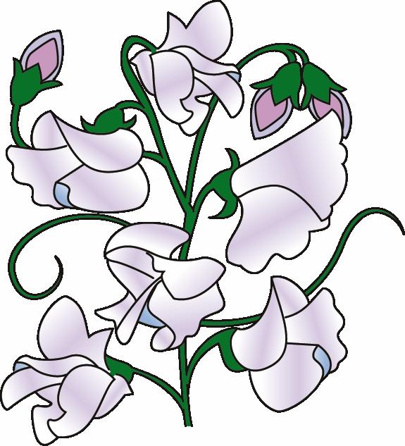 Pea flower clipart image freeuse Sweet Pea Flower Clip Art   Clipart Panda - Free Clipart Images image freeuse