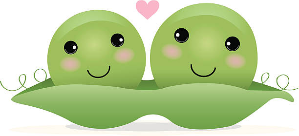 Pea in the pod clipart png transparent Pea pod clipart 5 » Clipart Station png transparent