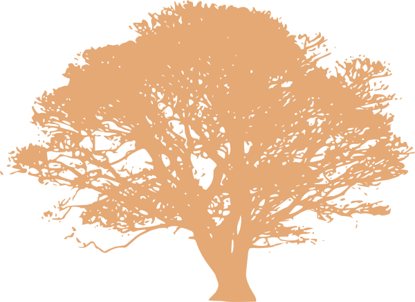Peace tree clipart svg library download PNG Peach Tree Transparent Peach Tree.PNG Images. | PlusPNG svg library download