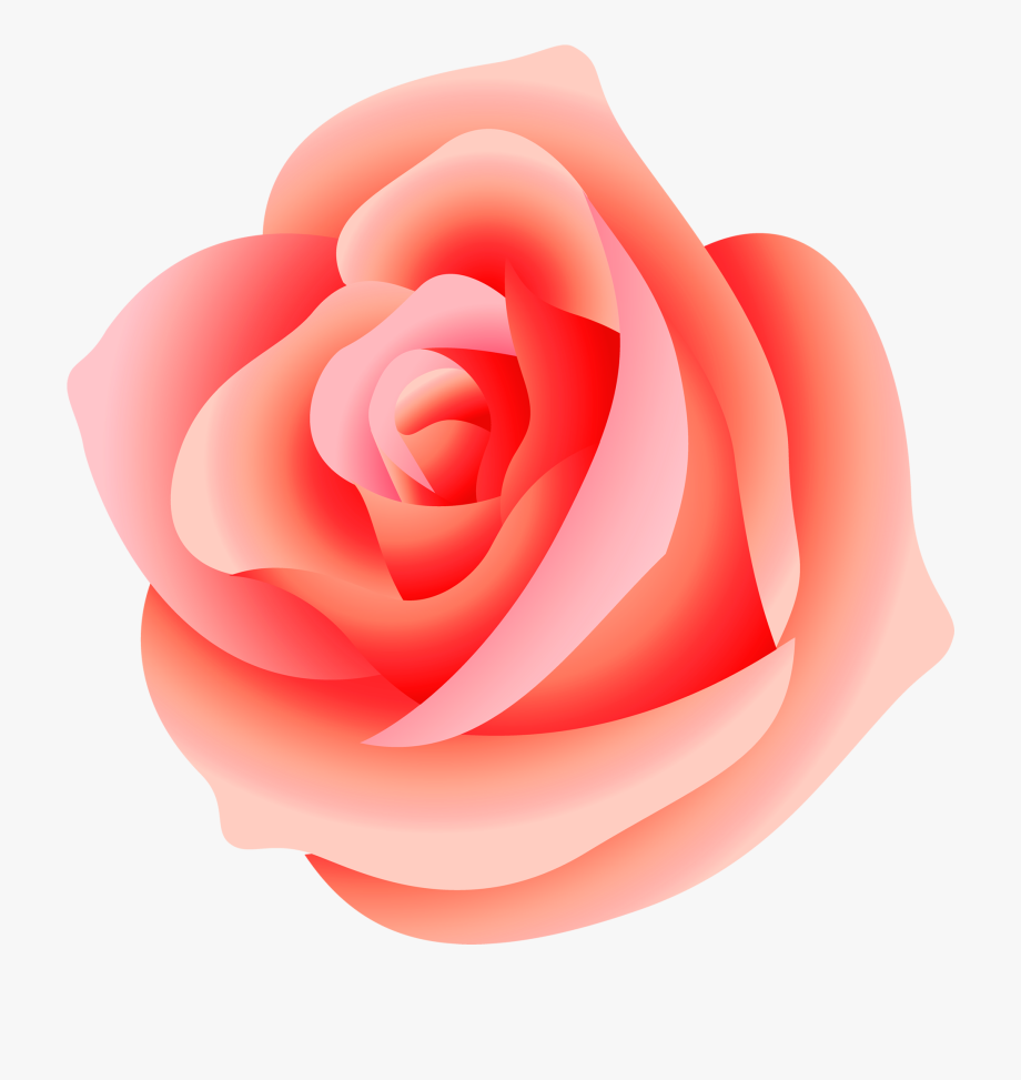 Peach rose clipart clip art free stock Pink Rose Clipart Png Format - Peach Rose Transparent ... clip art free stock