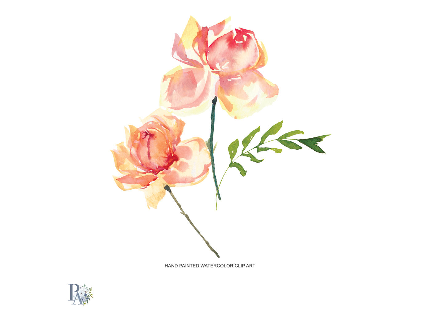 Peach rose clipart graphic library library Watercolor Purple & Peach Rose Clipart By Patishop Art ... graphic library library
