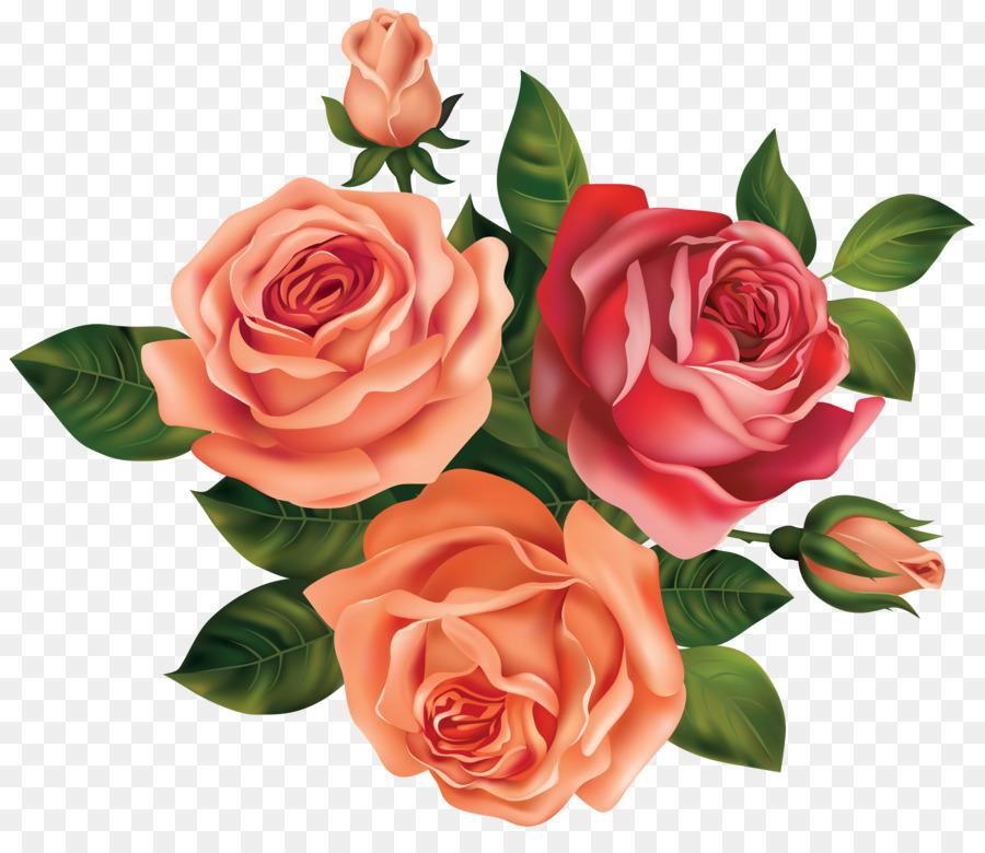 Peach rose clipart svg transparent library Black Pink Rose clipart - Rose, Flower, Peach, transparent ... svg transparent library