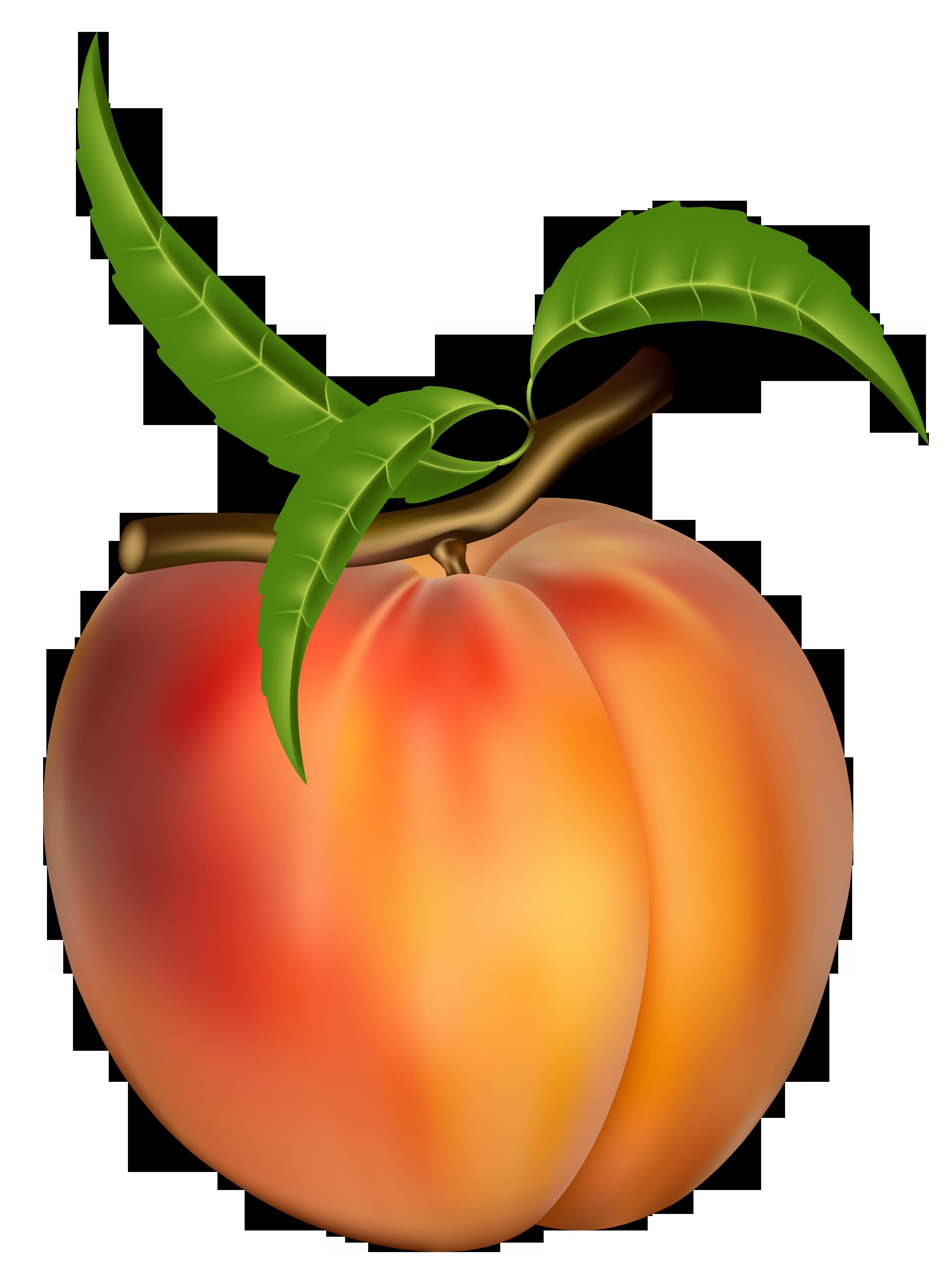Peaches clipart clip art transparent Peach Clipart Free | Zöldség, gyümölcs | Gyümölcs, Zöldségek és ... clip art transparent