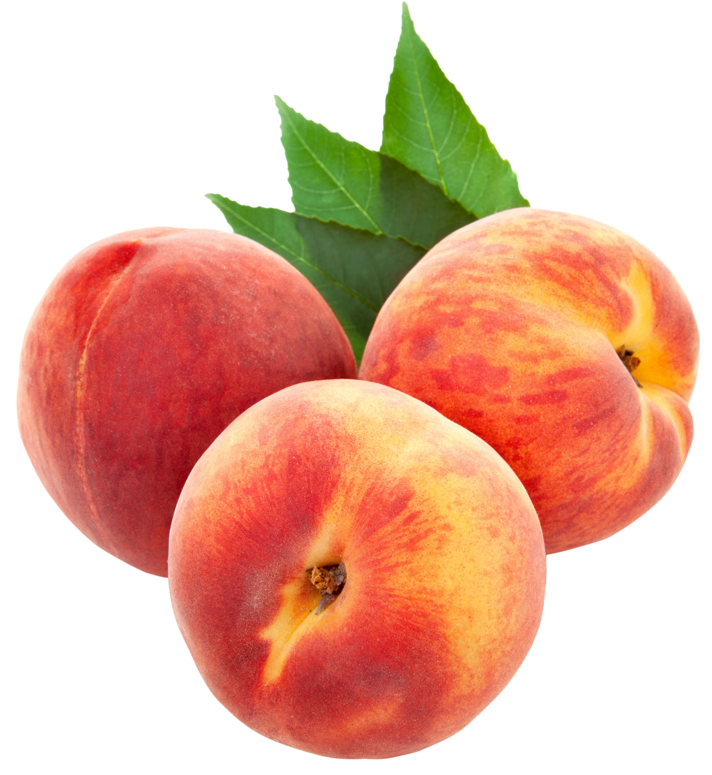 Peaches clipart picture free download Large PNG Peaches Clipart | Gallery Yopriceville - High-Quality ... picture free download