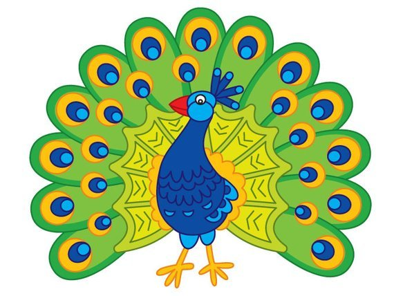 Peacock clipart pictures image transparent library Peacock clipart images 2 » Clipart Portal image transparent library