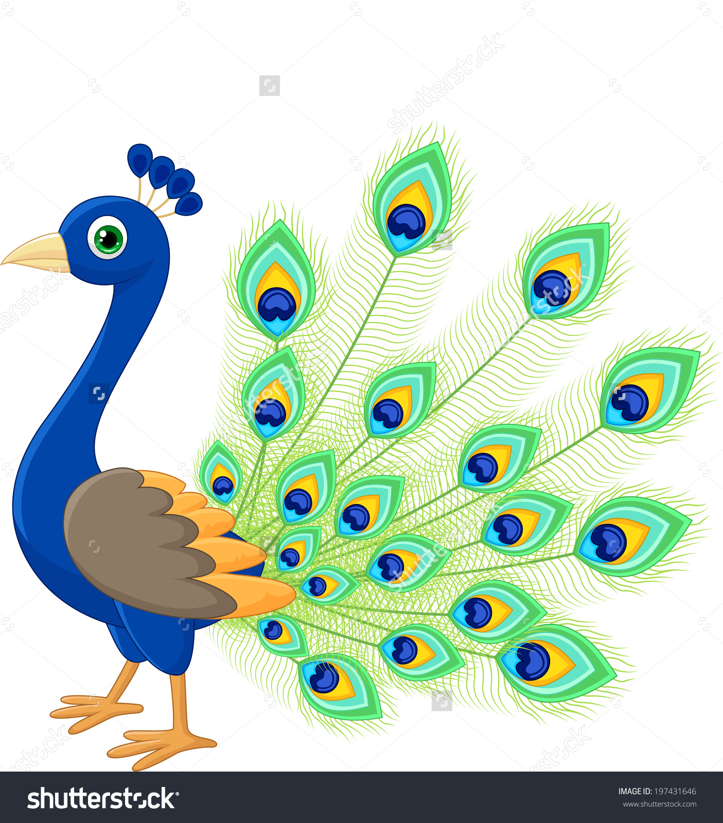 Peacock clipart pictures clip free stock 60+ Peacock Clip Art   ClipartLook clip free stock