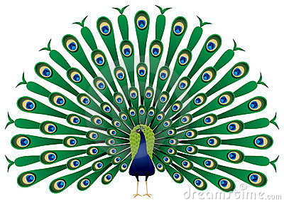 Peacock clipart vector svg royalty free 35+ Peacock Clipart | ClipartLook svg royalty free