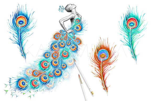 Peacock clipart pictures freeuse download Peacock Clipart freeuse download