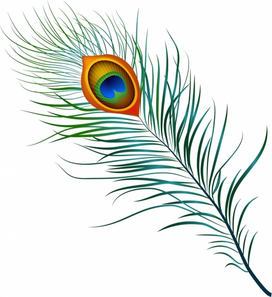 Peacock feather clipart vector svg freeuse Peacock Feather Free vector in Adobe Illustrator ai ( .AI ... svg freeuse