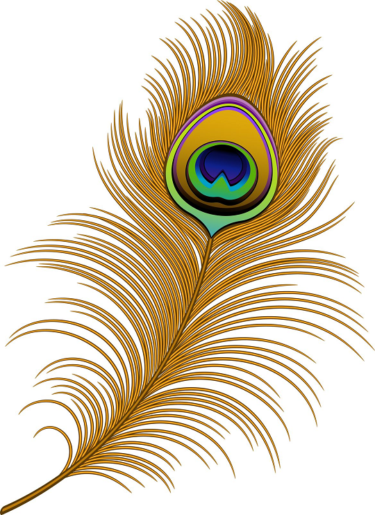 Peacock feather clipart vector freeuse library Vector Peacock Feather Clip Art   peacock feather patterns ... freeuse library