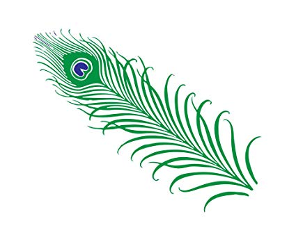 Peacock feathers clipart transparent stock Amazon.com: Home Comforts Laminated Poster1 Peacock Feather ... transparent stock