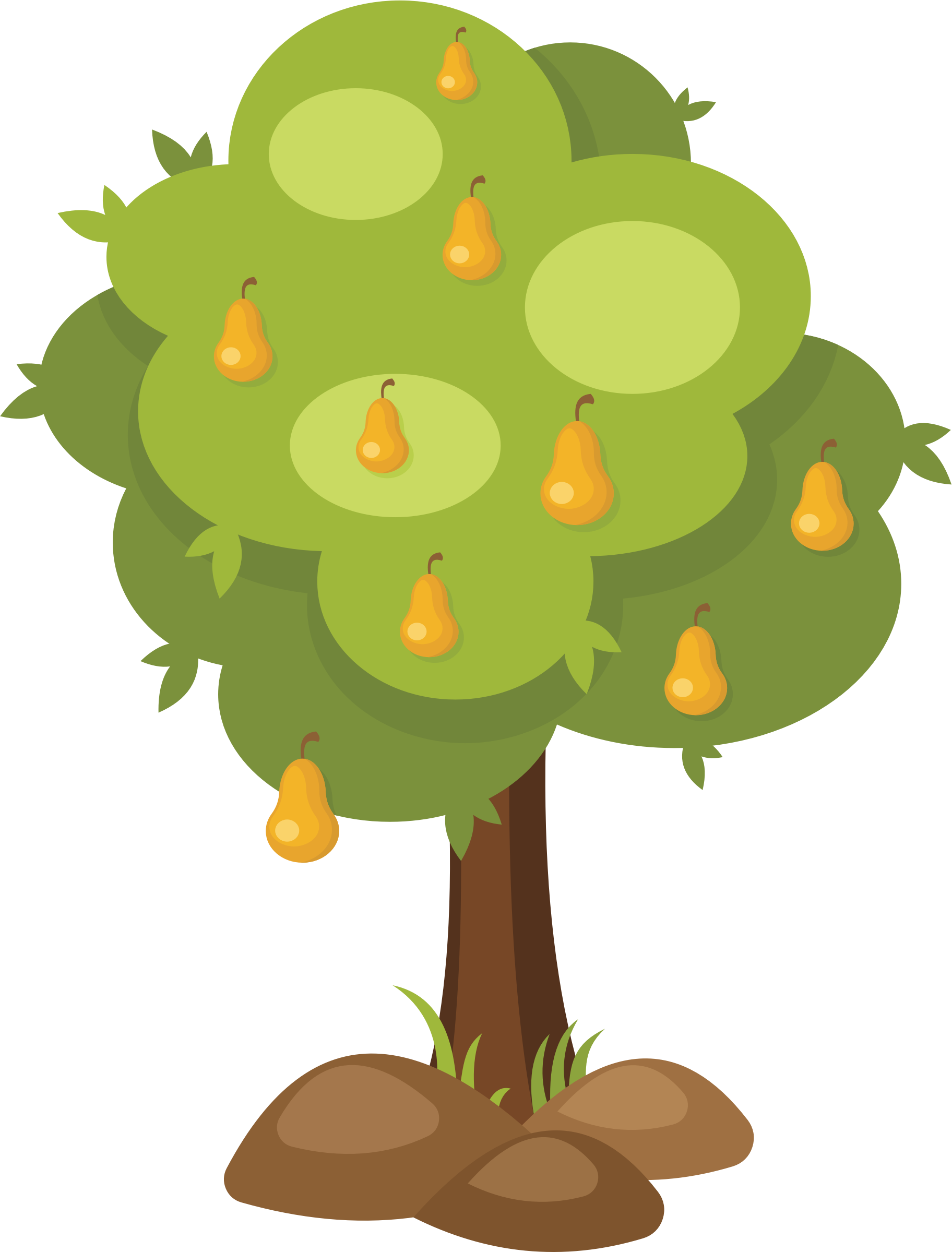 Tree with fruit clipart image freeuse Clipart - Pear Tree image freeuse