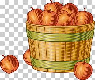 Peck of apples clipart graphic freeuse library 82 bushel PNG cliparts for free download | UIHere graphic freeuse library
