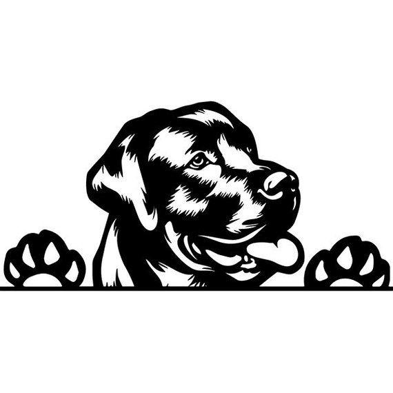 Pedigree logo clipart clipart royalty free stock Labrador Retriever #78 Peeking Dog Smiling Breed K-9 Animal ... clipart royalty free stock