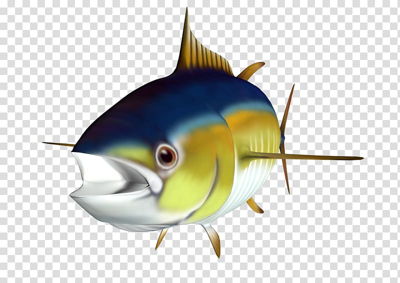 Pelagic fish clipart png royalty free download Albacore Fish , tuna transparent background PNG clipart | HiClipart png royalty free download