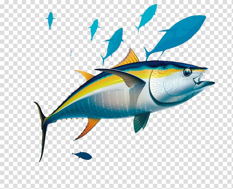 Pelagic fish clipart picture royalty free download Yellowfin tuna Albacore Illustration, Seabed fish transparent ... picture royalty free download