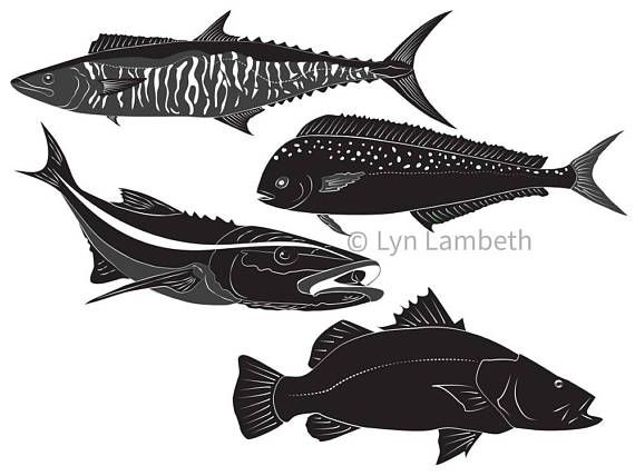 Pelagic fish clipart image black and white library Fish clipart, instant download hand drawn fish graphics, set of 4 ... image black and white library