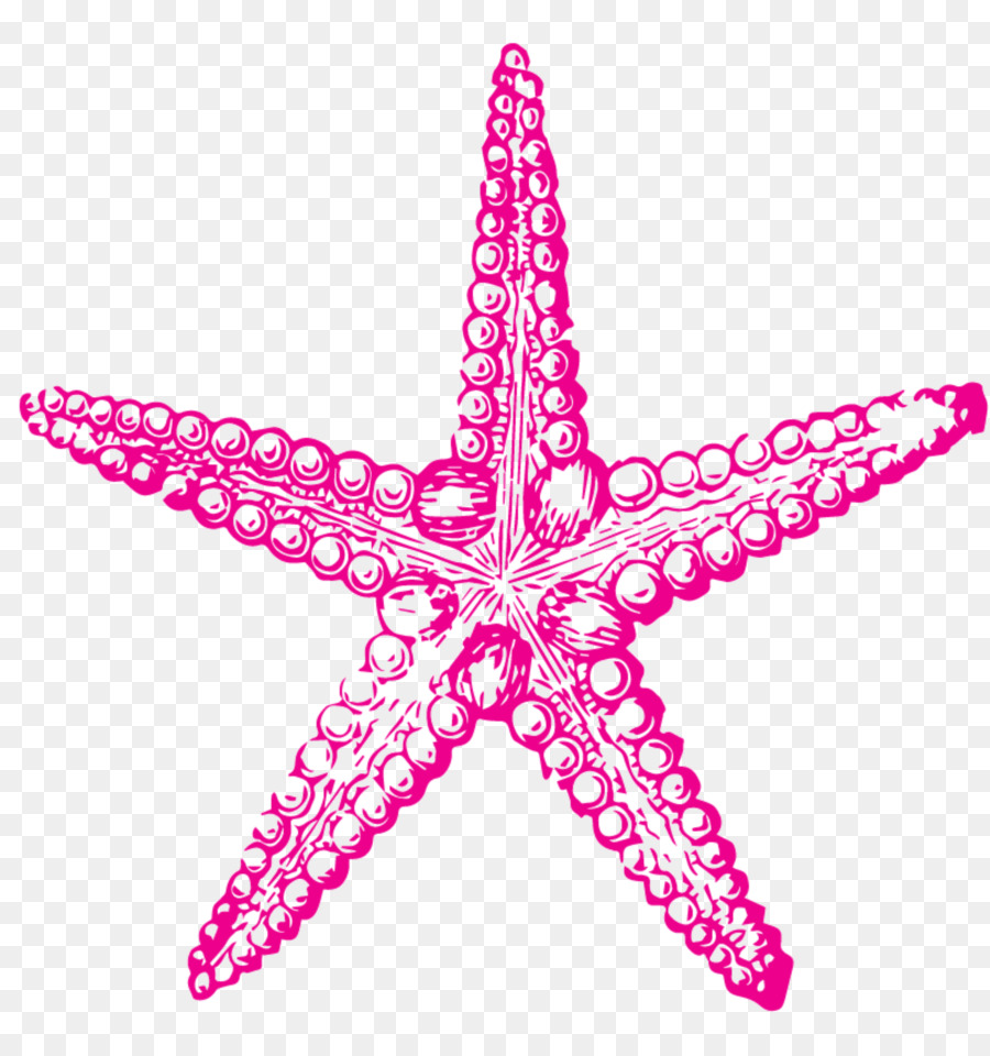Pencil starfish clipart svg transparent Pencil Clipart png download - 4250*4500 - Free Transparent ... svg transparent
