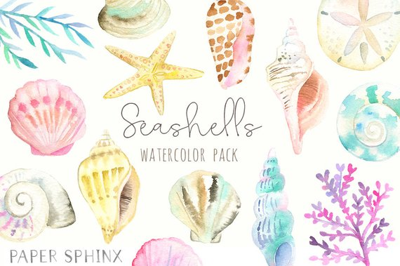 Pencil starfish clipart freeuse library Watercolor Seashells Clipart - Nautical Watercolor Clip Art ... freeuse library