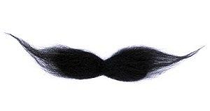 Pencil thin mustache clipart free Pencil Thin Mustache Clipart - clipartsgram.com free