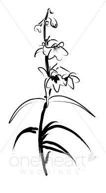 Penstemon clipart graphic royalty free library Penstemon Clipart | Elegant Wedding Flower Sketches graphic royalty free library