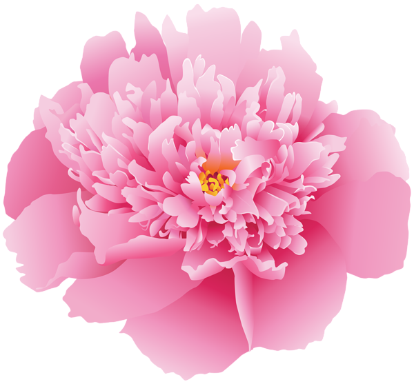 Peony flower clipart png freeuse stock Pink Peony Flower PNG Clip Art Image | Gallery Yopriceville - High ... png freeuse stock