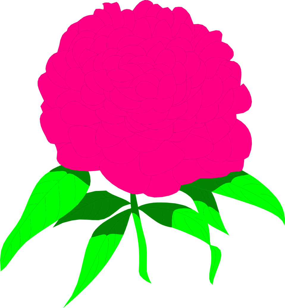 Peony flower clipart banner free Peony | Free Stock Photo | Illustration of a pink peony flower | # 8483 banner free