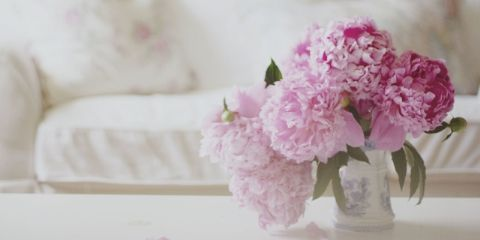 Peony season picture freeuse 4 Flowers To Hold You Over Until The Next Peony Season picture freeuse