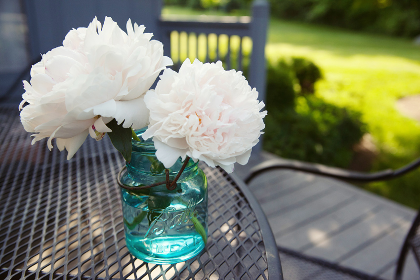 Peony season jpg free download Peony season - ClipartFest jpg free download
