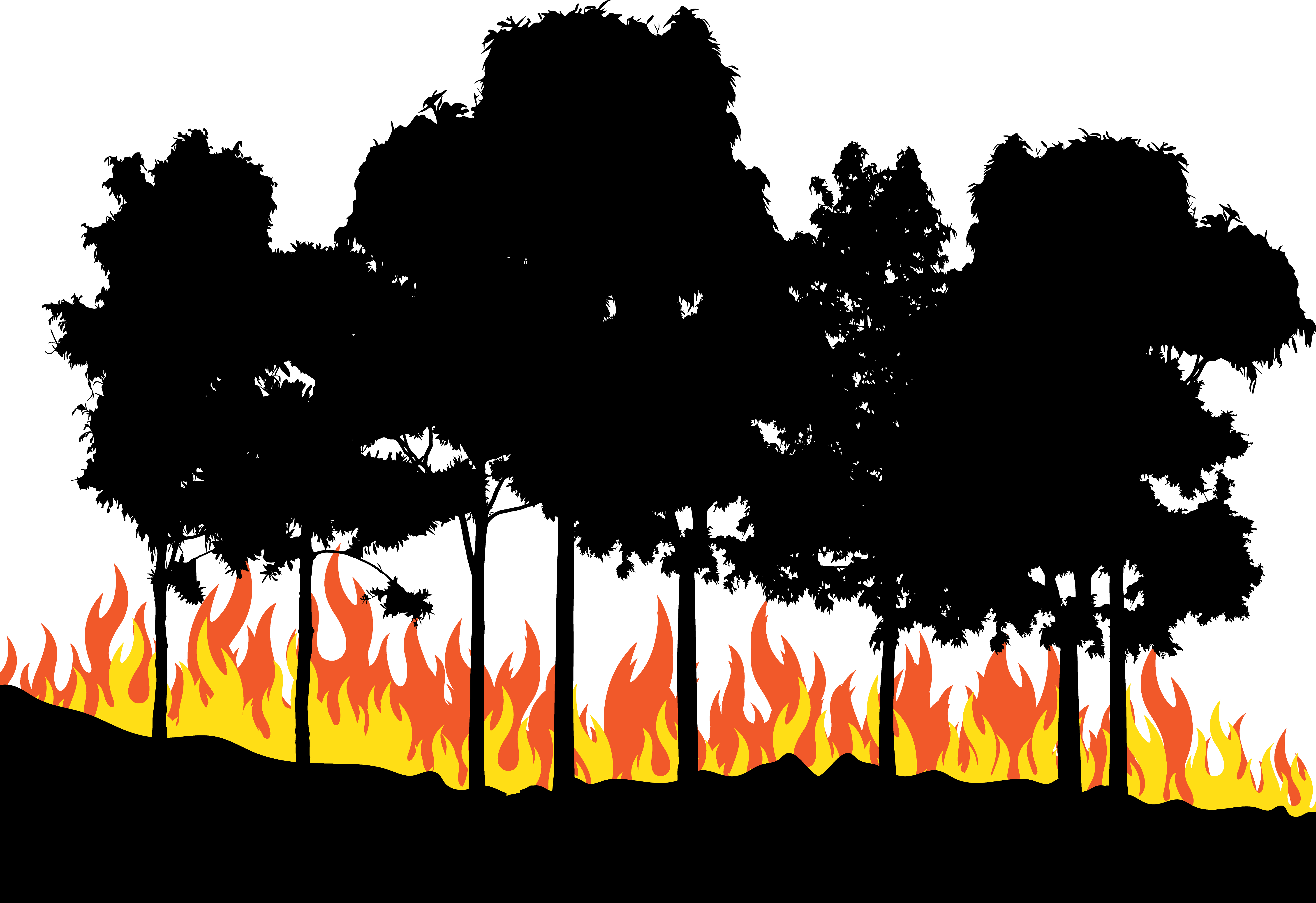 People dancing in the forest around fire clipart jpg download Fire Euclidean vector - Fire in the woods png download ... jpg download