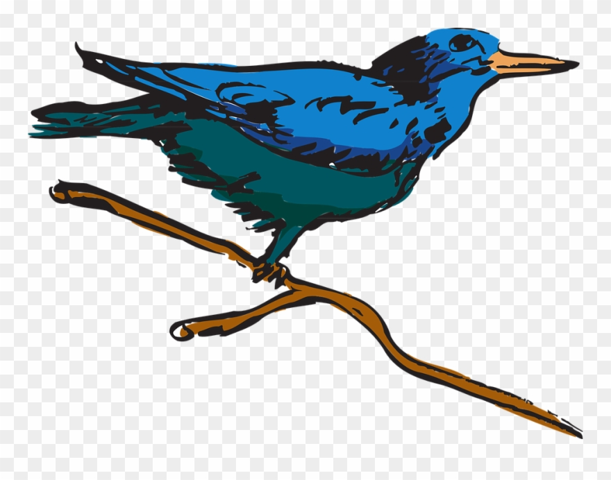 Perched clipart picture freeuse stock Feather Clipart Creative - Bird Perched Clipart - Png Download ... picture freeuse stock