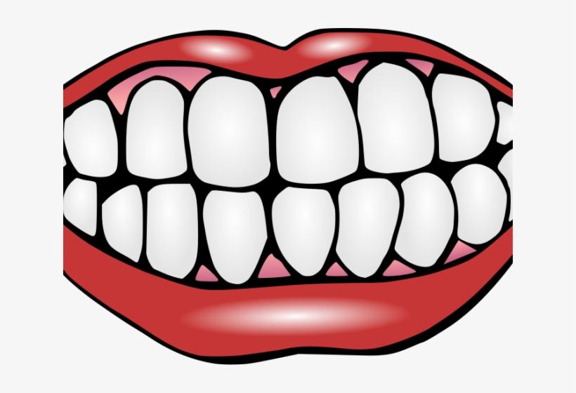 Perfect teeth clipart clipart transparent Perfect Teeth Cliparts - Teeth Clipart Transparent PNG ... clipart transparent