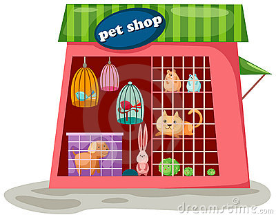 Pet store clipart picture download Pet store clipart 3 » Clipart Station picture download