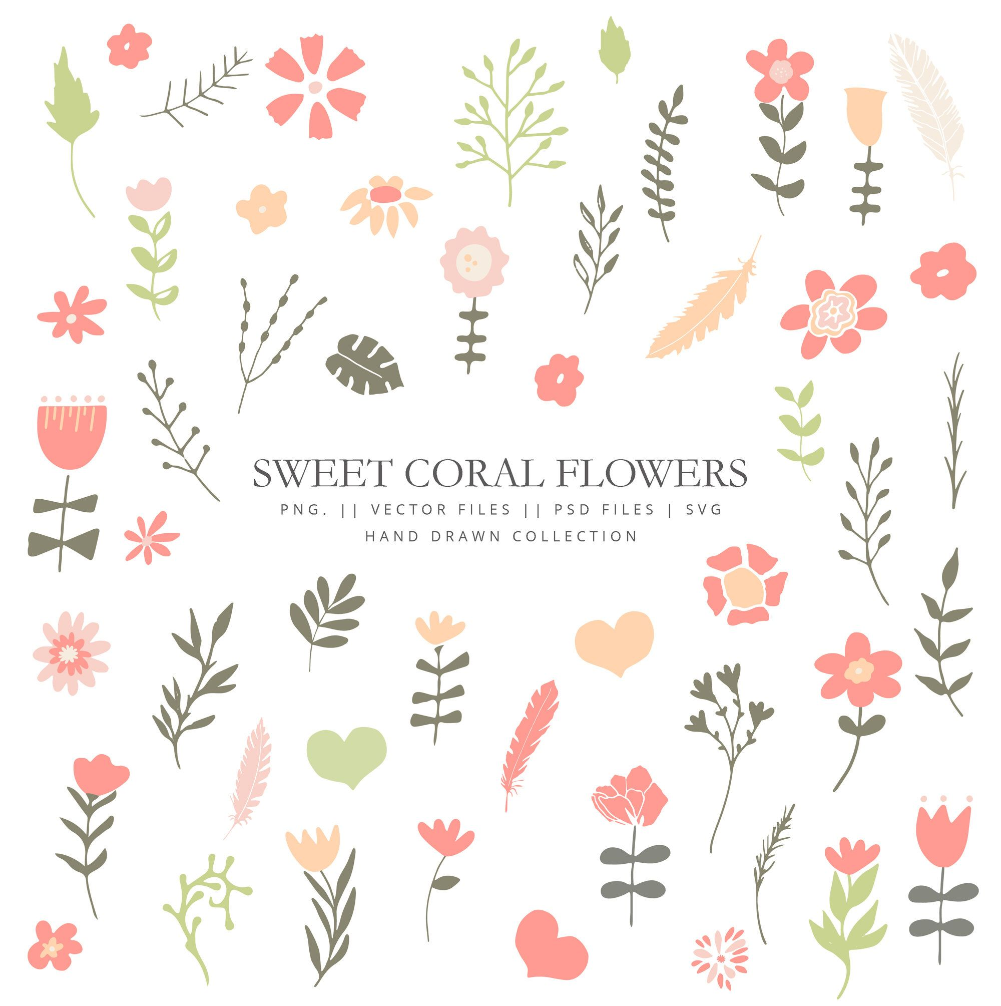 Petalos clipart banner black and white download Clipart con flores en color coral, 50 elementos florales ... banner black and white download