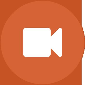 Petland logo clipart jpg transparent download Home | Petland Norwin, PA jpg transparent download
