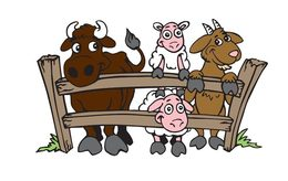 Petting zoo clipart jpg freeuse stock Download petting zoo animation clipart Horse Pig Clip art jpg freeuse stock