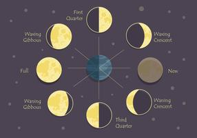 Phases of moon clipart vector free download Moon Phase Free Vector Art - (4,529 Free Downloads) vector free download