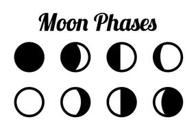 Phases of moon clipart jpg free stock Moon Phase Free Vector Art - (4,529 Free Downloads) jpg free stock