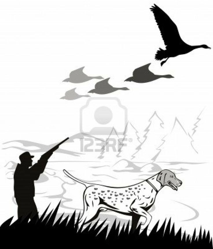 Pheasant hunting clipart image black and white download pheasant hunting clipart | Clipart Panda - Free Clipart Images image black and white download
