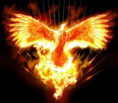 Phoenix rising clipart image free stock Phoenix Rising: Vision of a New America - Zen Gardner - Clip ... image free stock