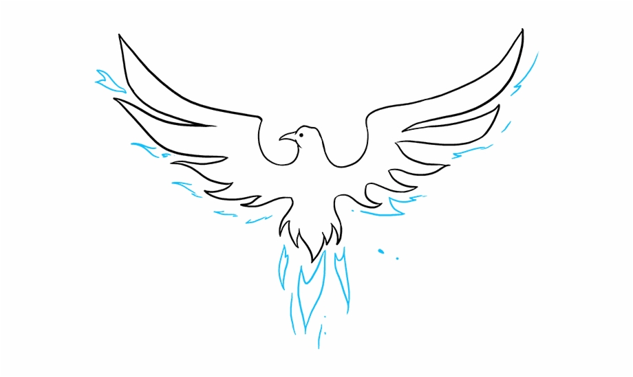 Phoenix wings clipart black and white How To Draw Phoenix - Illustration Free PNG Images & Clipart ... black and white