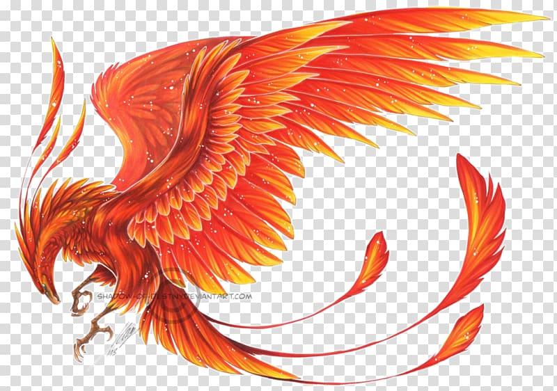 Phoenix wings clipart image transparent library Phoenix Ibong Adarna Myth , wings transparent background PNG ... image transparent library