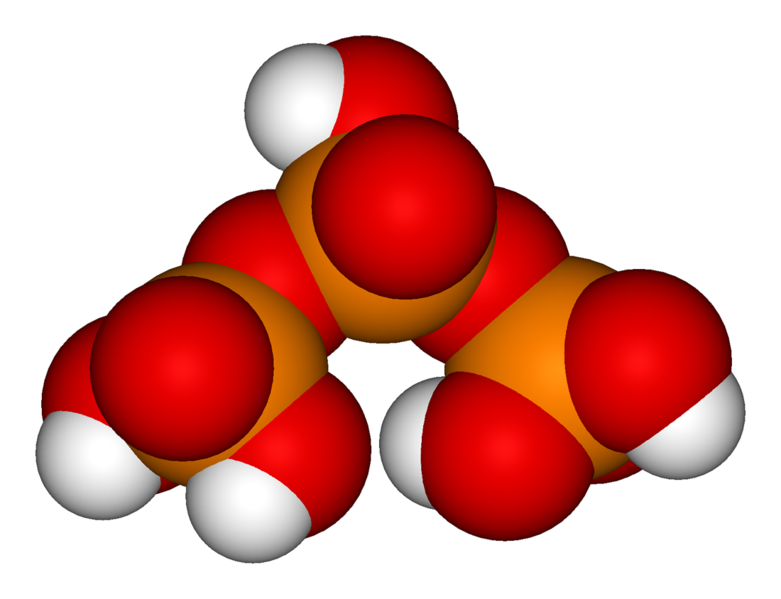 Phosphate clipart image transparent download Phosphoric acids and phosphates - wikidoc image transparent download