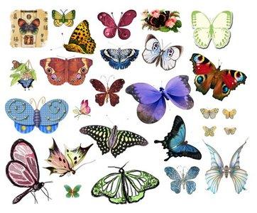 Photoshop cliparts free download svg freeuse Photoshop Clipart | Free Download Clip Art | Free Clip Art | on ... svg freeuse