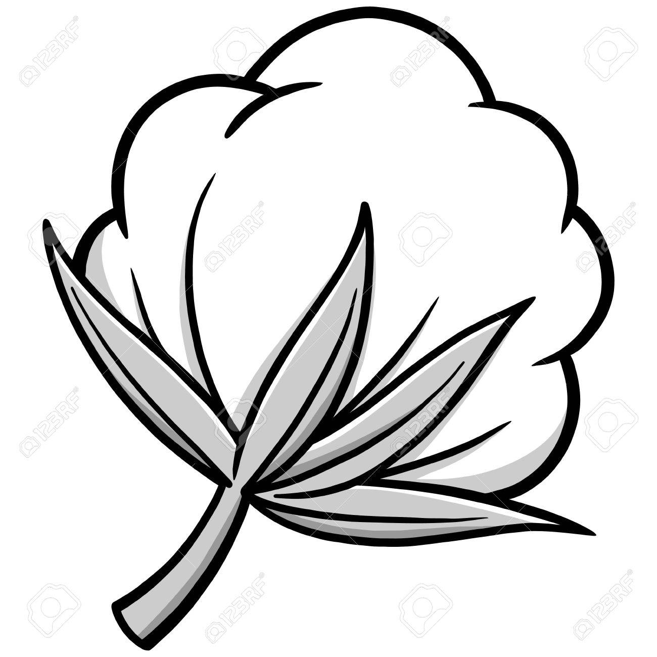 Picking cotton plant black and white clipart clip Cotton Plant Drawing | Free download best Cotton Plant ... clip