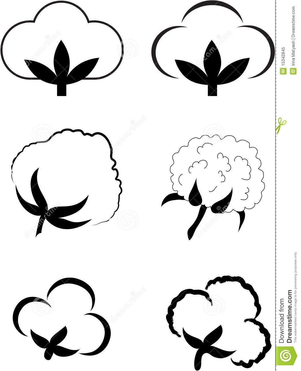 Picking cotton plant black and white clipart clipart royalty free download cotton plant images | Cotton (Gossypium). Royalty Free Stock ... clipart royalty free download
