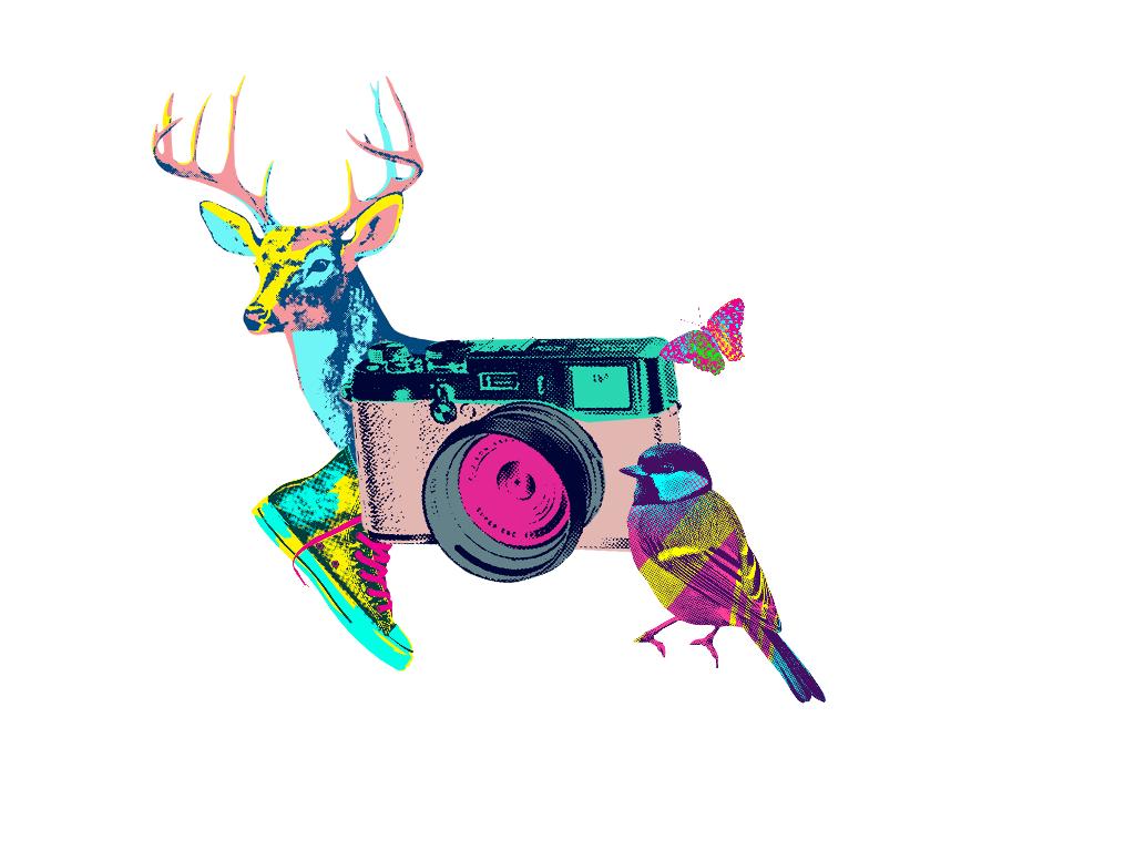 Picsart clipart camera clip freeuse Fun with PicsArt ClipArt! :) clipart camera deer bird... clip freeuse