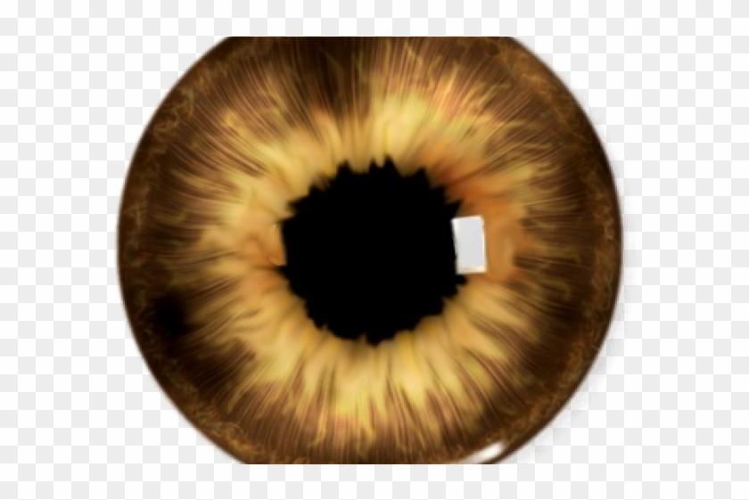 Picsart clipart lens clip art library library Brown Eyes Clipart Yellow Eye - Picsart Eyes Lenses Png ... clip art library library
