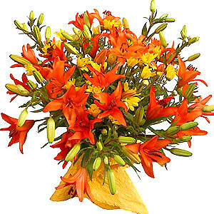 Picture of big bunch of flowers vector 17 Best images about Hand Tie bouquets on Pinterest | Bride ... vector